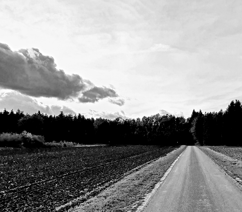Road & Sky, Visbek